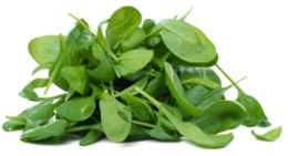 Un mucchio di foglie di spinaci