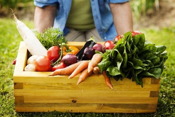 Scatola di verdure dell'orto