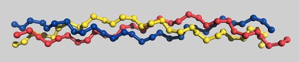 Proteine del collagene