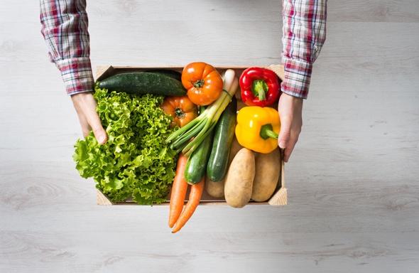 Mani che tengono una scatola di verdure