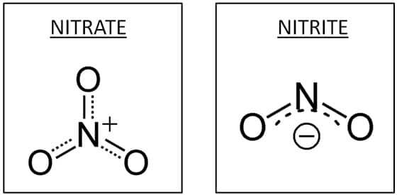 Struttura molecolare di nitrati e nitriti