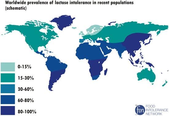 Prevalenza mondiale dell'intolleranza al lattosio